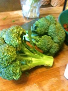 Broccoil